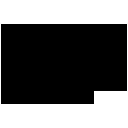gibson-repair